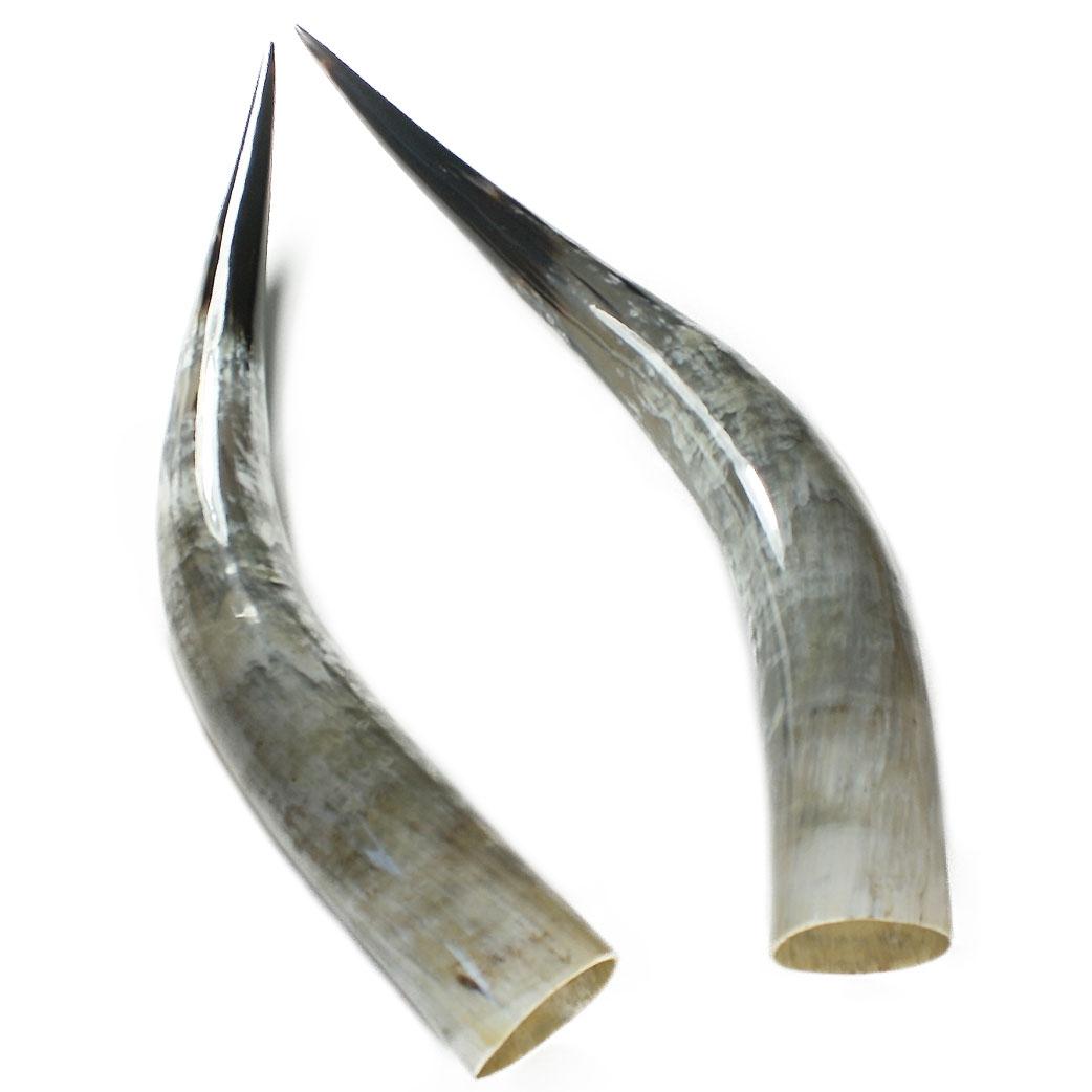 Horncraft Horns